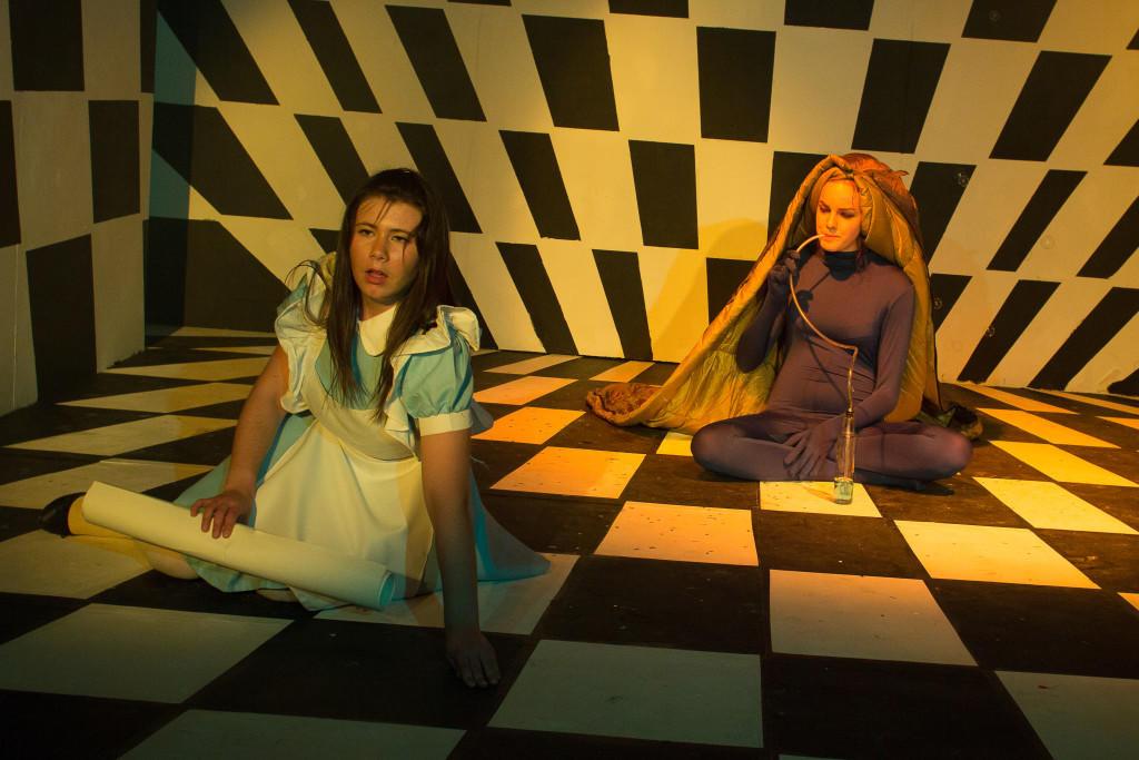 Alice in wonderland-51 (1)